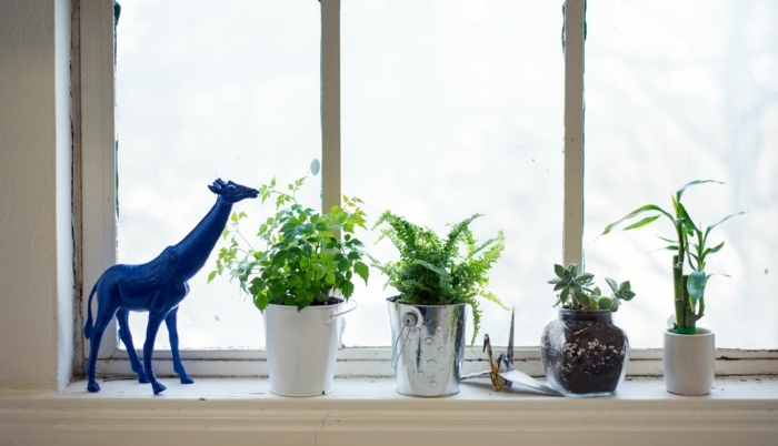 windowsill decorating window decorating tips