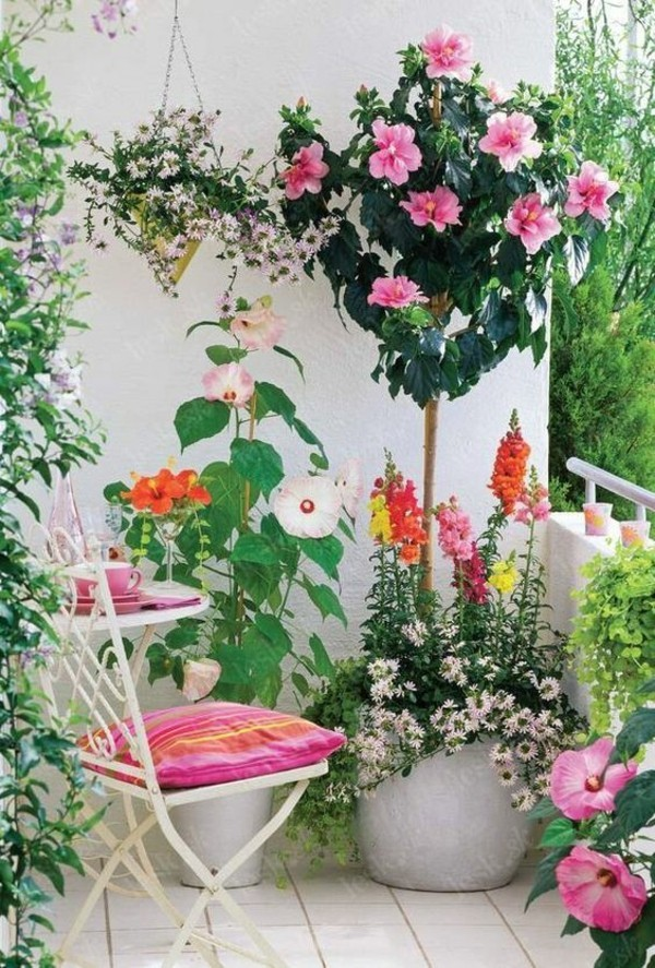 plant ideas terrace furniture small terrace design