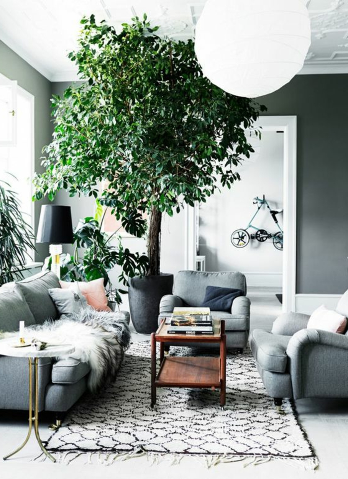 indoor plants decorate potted plants light gray furniture