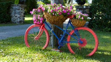 Photo of 12 creative garden ideas with bicycle