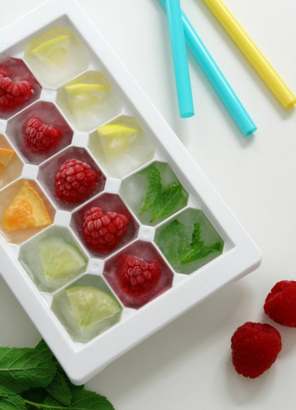 fridge ice cubes dyi ideas ice cubes