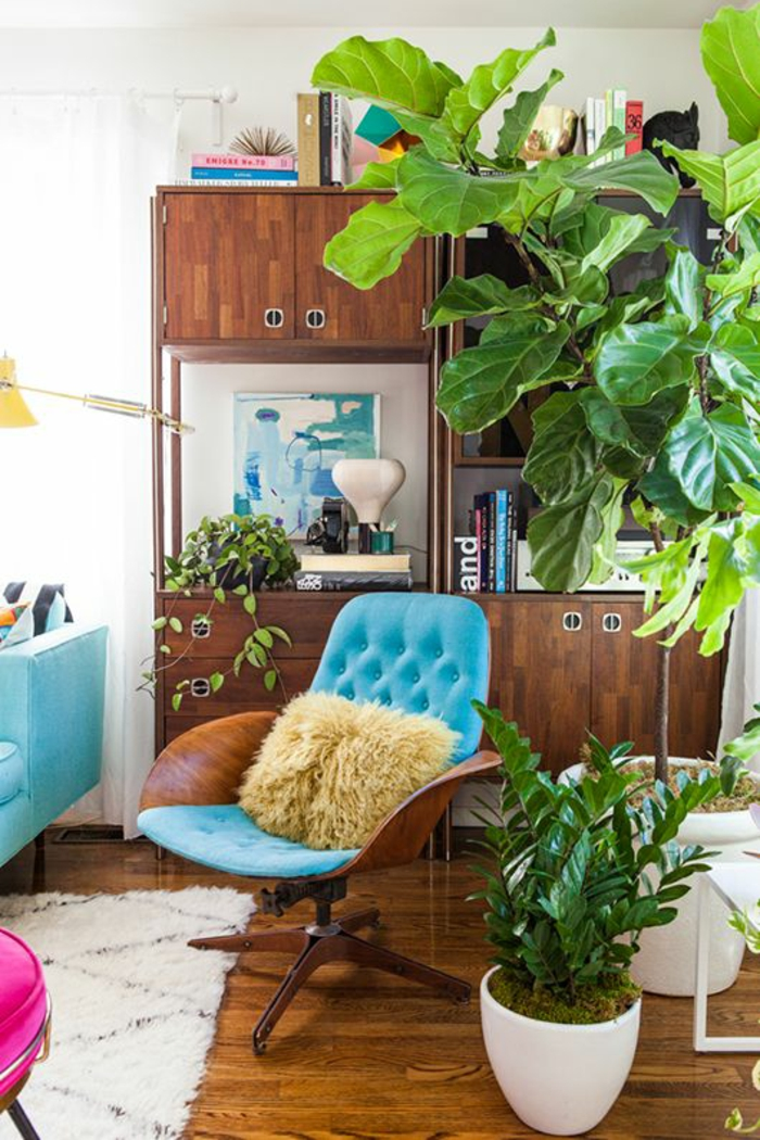 easy-care indoor plants images retro living room furniture