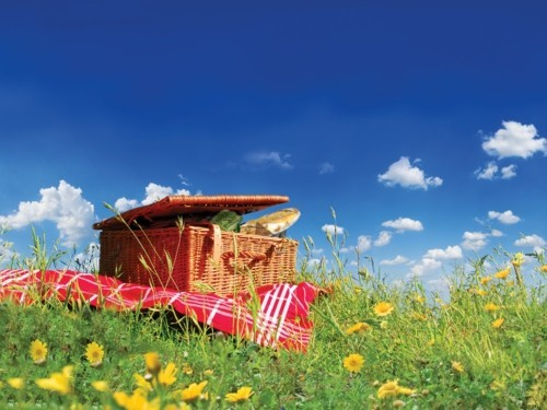 picnic ideas basket and tablecloth
