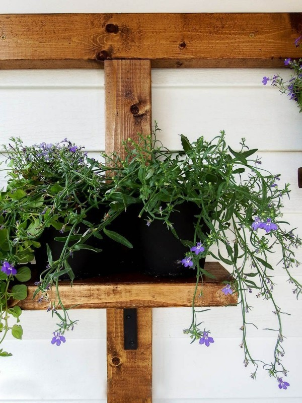 pot-on-a-wooden-base diy-planter