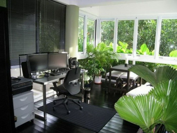 Green plants determine the office