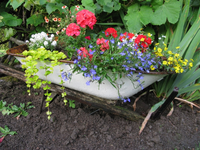 garden beautify sustainable gardening plant containers