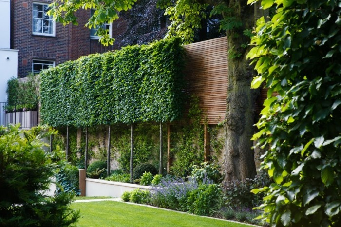 trellis in the garden stylish and modern ideas for the summer recreation area