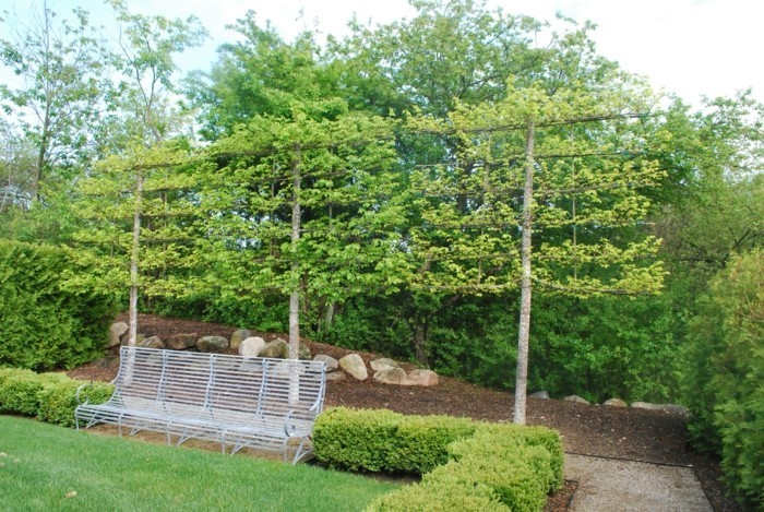 gardening ideas with a trellis to create a nice recreation area for the summer
