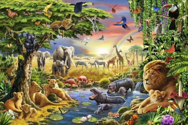 Kids Wallpaper Jungle For Attractive Nursery Decoration Solutions