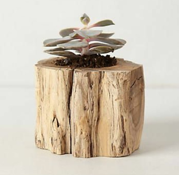 tree trunk decoration diy projects planter wood succulents