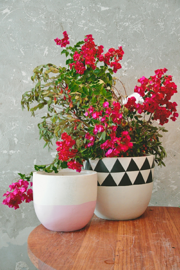 flowerpots painted plants with flower