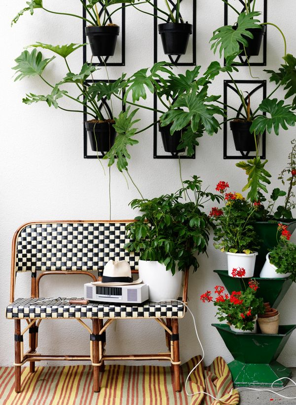 Living room wall with plants