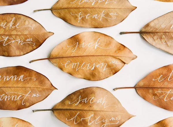 leaf forms with names