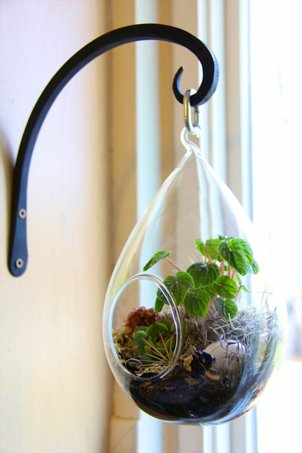 terrarium plant glass tube oval hanging wall decoration ideas