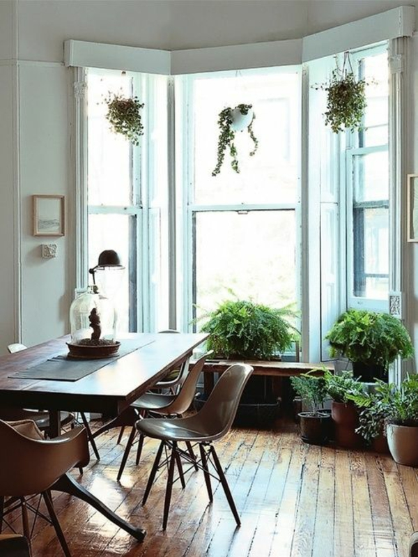 Determine the living room of green plants