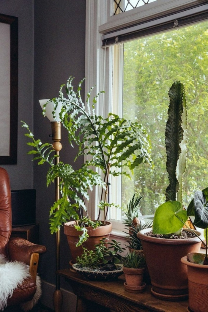 deco window sill plant rustic leather armchair