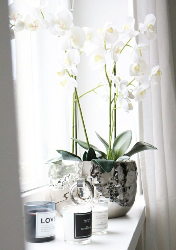 windowsill deco white silver plants