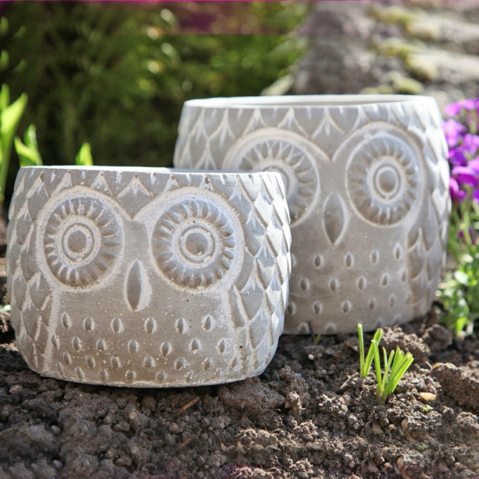 garden beautify plant container owls