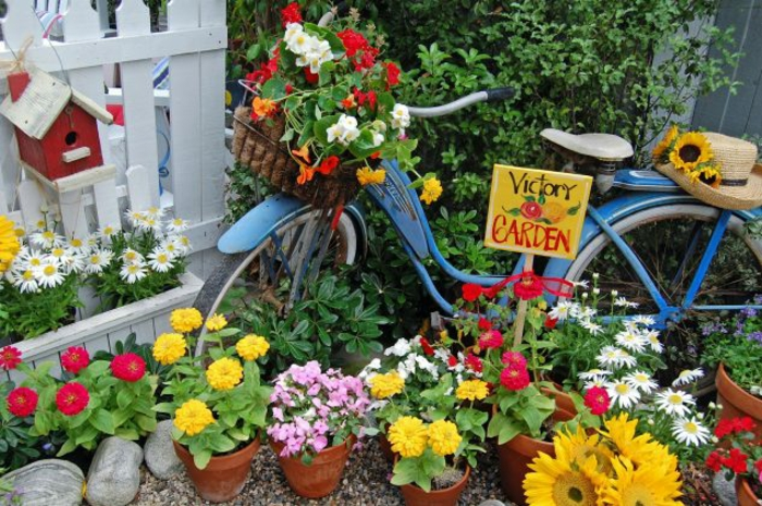 Creative gardening ideas for small gardens. Bicycle sign