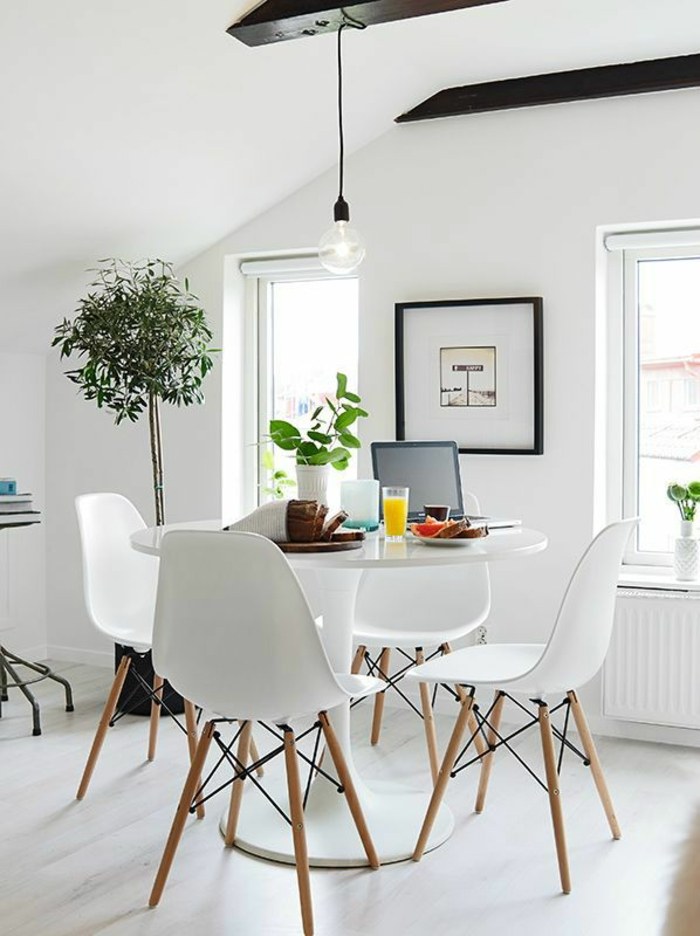 beautiful indoor plants easy to clean bright dining room with potted plants